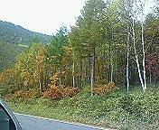 軽井沢行ってきました